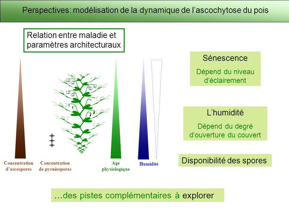 Perspectives: modélisation de la dynamique de lascochytose du pois Concentration dascospores Humidité Age physiologique Concentration de pycniospores