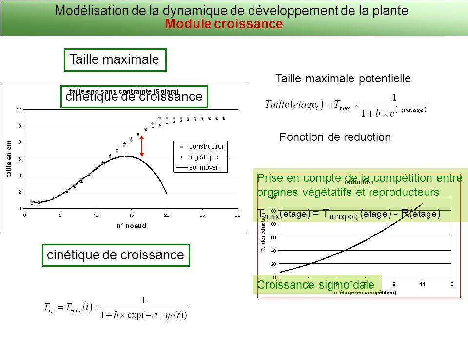 Modélisation de la dynamique de développement de la plante Module croissance cinétique de croissance Taille maximale cinétique de croissance Taille ma