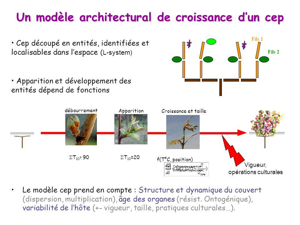 Le modèle cep prend en compte : Structure et dynamique du couvert (dispersion, multiplication), âge des organes (résist. Ontogénique), variabilité de