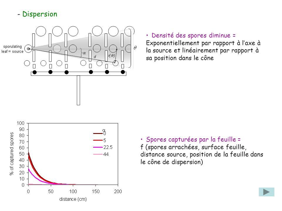 - Dispersion Densité des spores diminue = Exponentiellement par rapport à laxe à la source et linéairement par rapport à sa position dans le cône Spores capturées par la feuille = f (spores arrachées, surface feuille, distance source, position de la feuille dans le cône de dispersion)