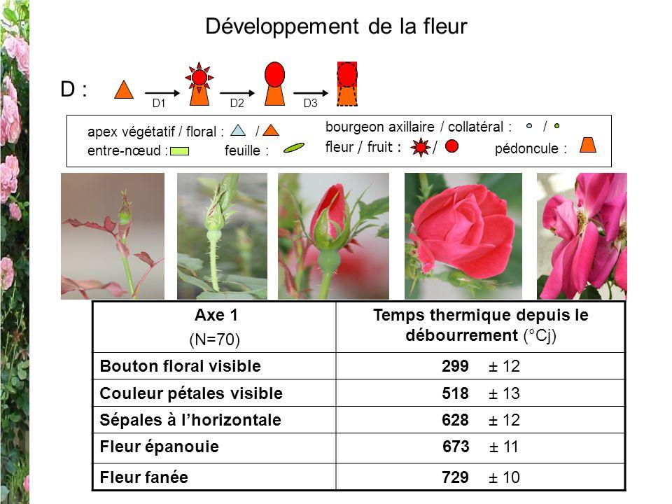 Développement de la fleur Axe 1 (N=70) Temps thermique depuis le débourrement (°Cj) Bouton floral visible299 ± 12 Couleur pétales visible518 ± 13 Sépa