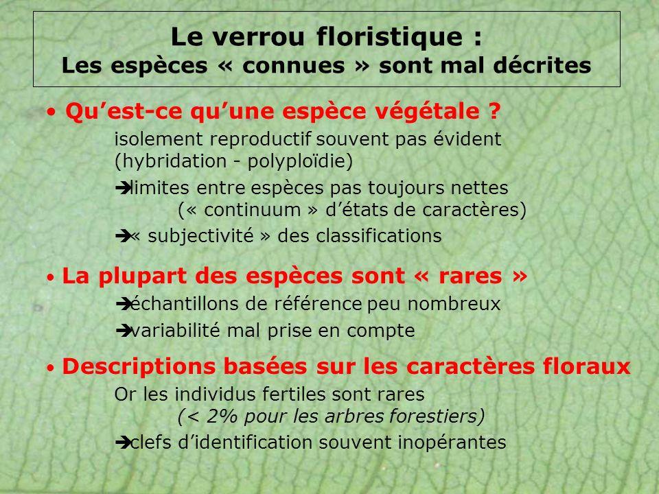 Le verrou floristique : Les espèces « connues » sont mal décrites La plupart des espèces sont « rares » échantillons de référence peu nombreux variabi