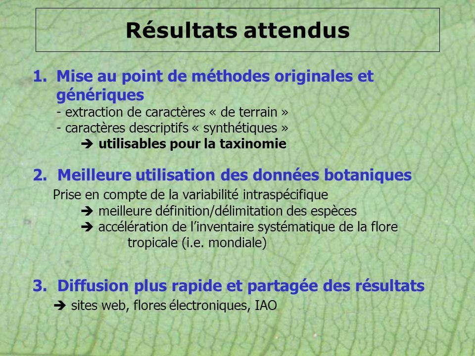 Résultats attendus 2. Meilleure utilisation des données botaniques Prise en compte de la variabilité intraspécifique meilleure définition/délimitation