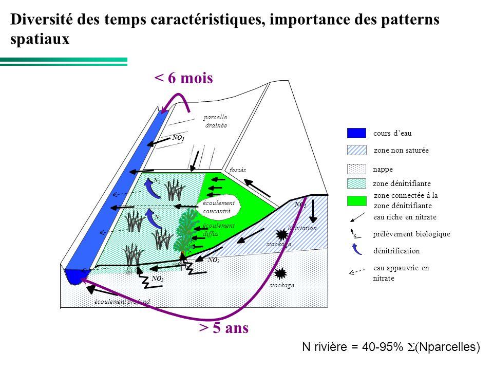 Diversité des temps caractéristiques, importance des patterns spatiaux > 5 ans < 6 mois N rivière = 40-95% Nparcelles)