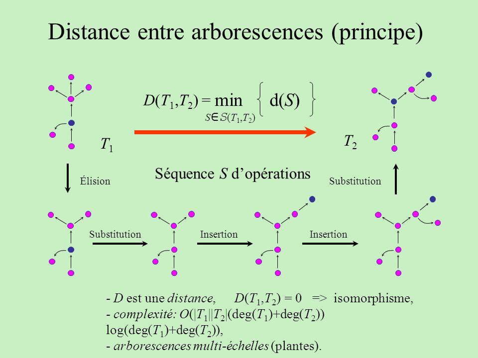 T1T1 T2T2 Élision Substitution Insertion Séquence S dopérations d(S) min S S (T 1,T 2 ) D(T 1,T 2 ) = Distance entre arborescences (principe) - D est