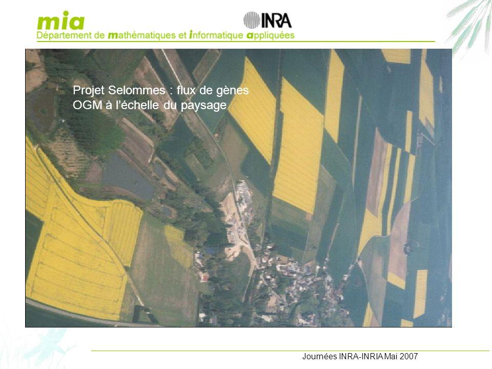 Journées INRA-INRIA Mai 2007 Projets et réalisations Projet Selommes : flux de gènes OGM à léchelle du paysage