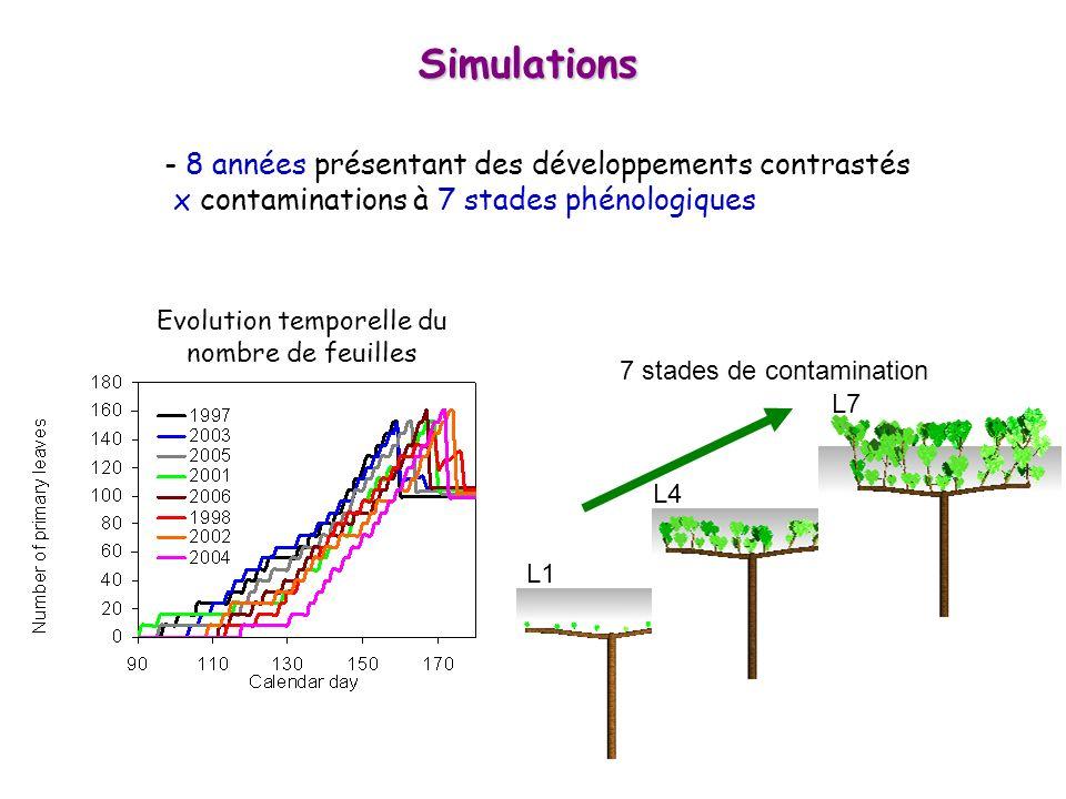- 8 années présentant des développements contrastés x contaminations à 7 stades phénologiques Simulations Evolution temporelle du nombre de feuilles L