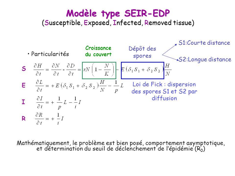 Modèle type SEIR-EDP (Susceptible, Exposed, Infected, Removed tissue) Particularités S E I R Croissance du couvert Dépôt des spores S1:Courte distance