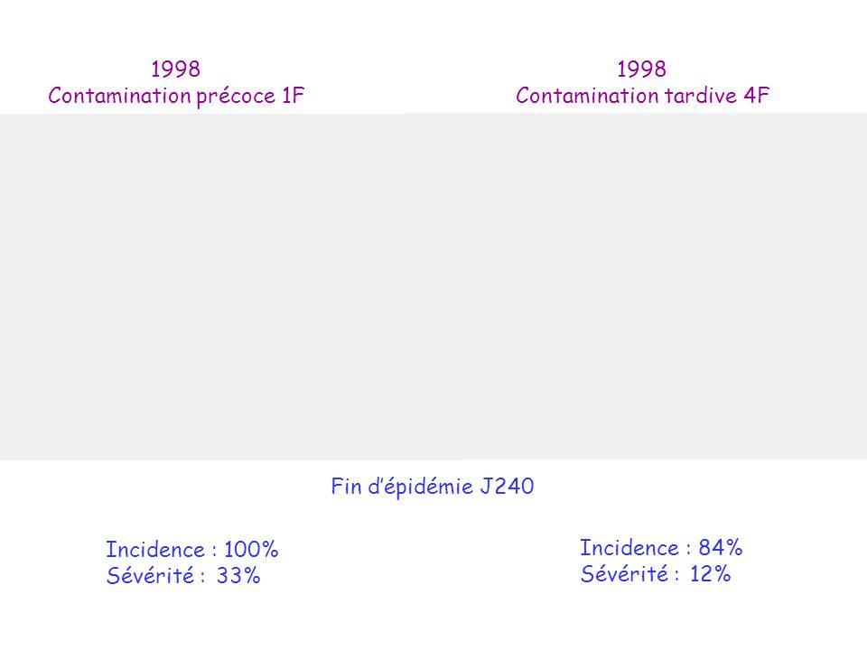 1998 Contamination précoce 1F 1998 Contamination tardive 4F Fin dépidémie J240 Incidence : 100% Sévérité : 33% Incidence : 84% Sévérité : 12%