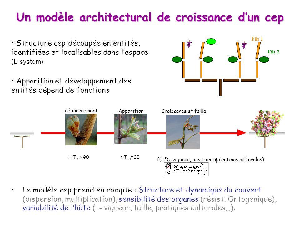 Le modèle cep prend en compte : Structure et dynamique du couvert (dispersion, multiplication), sensibilité des organes (résist. Ontogénique), variabi