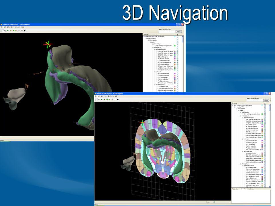 20 3D Navigation