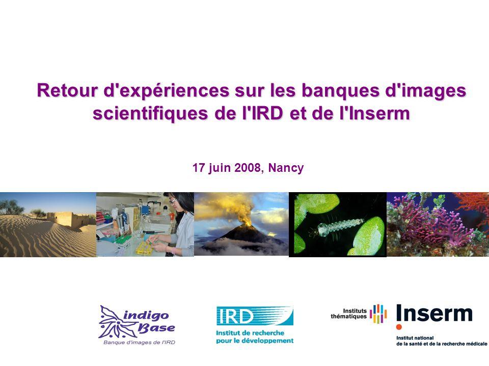 Retour d expériences sur les banques d images scientifiques de l IRD et de l Inserm 17 juin 2008, Nancy