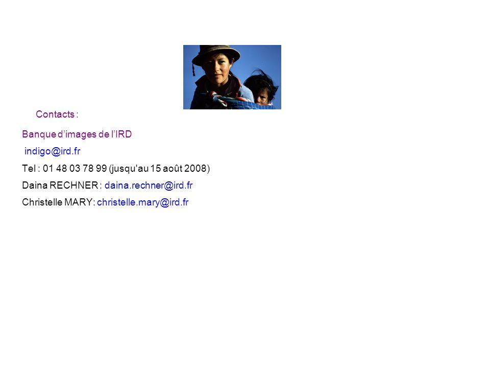 Contacts : Banque dimages de lIRD indigo@ird.fr Tel : 01 48 03 78 99 (jusqu'au 15 août 2008) Daina RECHNER : daina.rechner@ird.fr Christelle MARY: chr