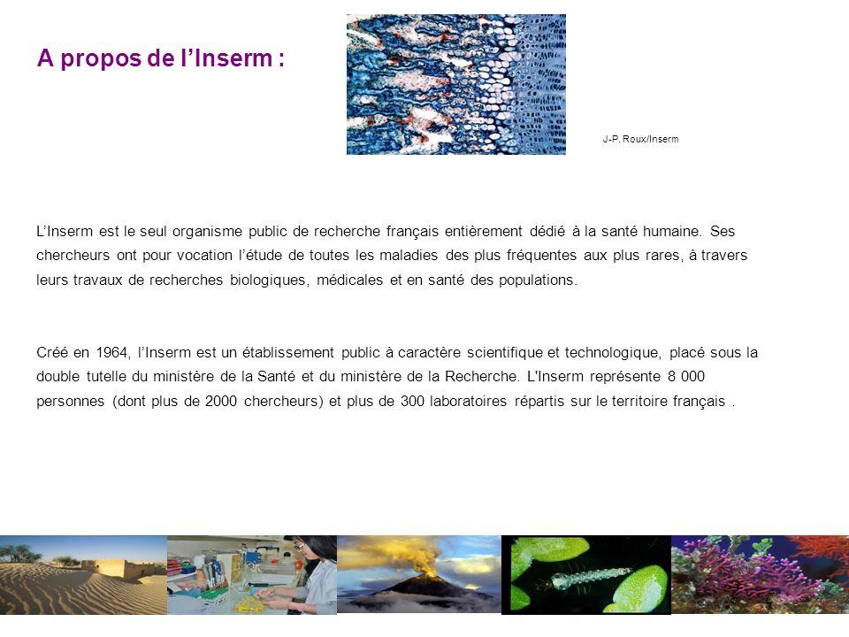 LInserm est le seul organisme public de recherche français entièrement dédié à la santé humaine.