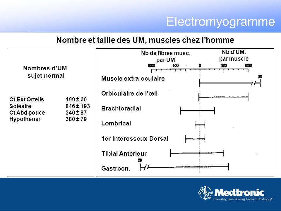 Nb de fibres musc. par UM Nb d'UM. par muscle Muscle extra oculaire Orbiculaire de l'œil Brachioradial Lombrical 1er Interosseux Dorsal Tibial Antérie