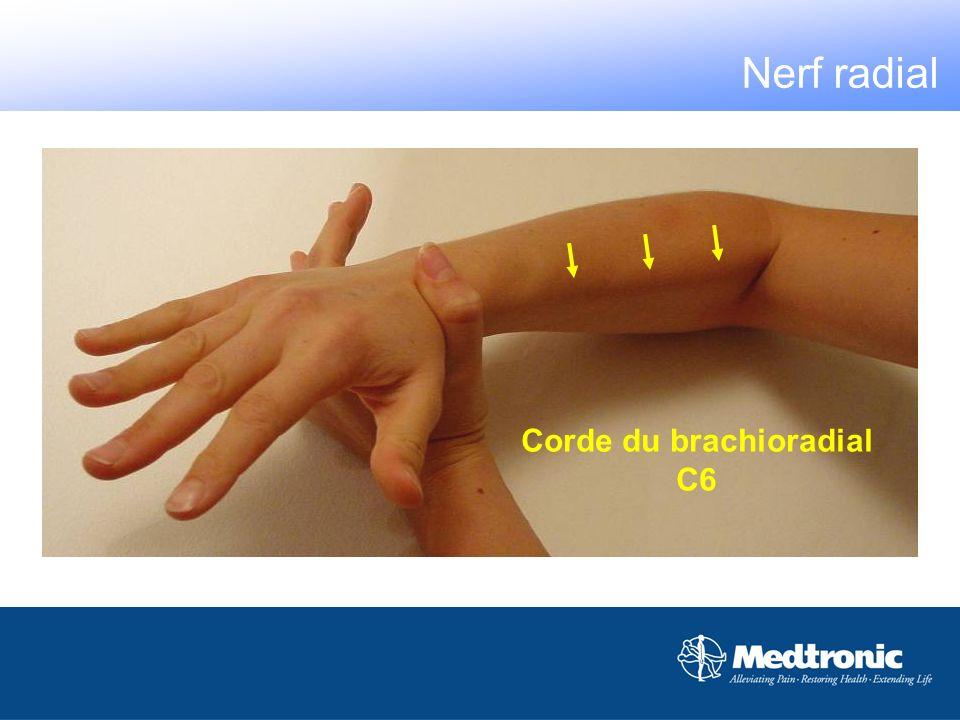 Corde du brachioradial C6 Nerf radial