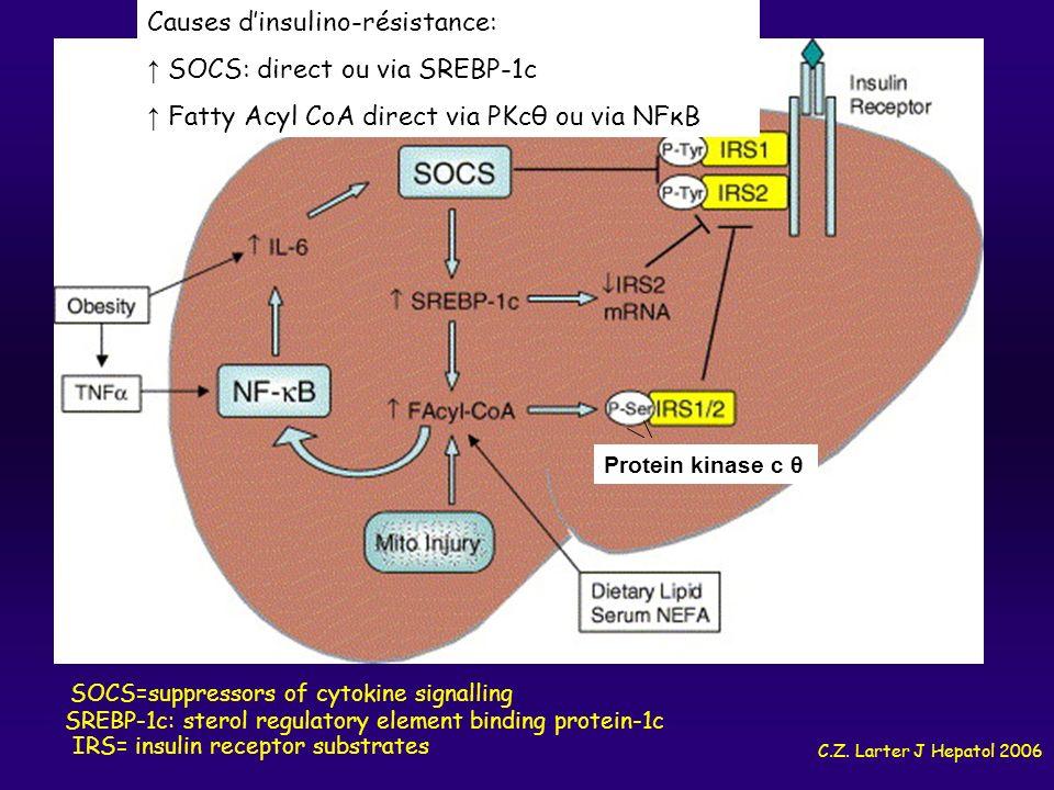 C.Z. Larter J Hepatol 2006 SOCS=suppressors of cytokine signalling IRS= insulin receptor substrates SREBP-1c: sterol regulatory element binding protei