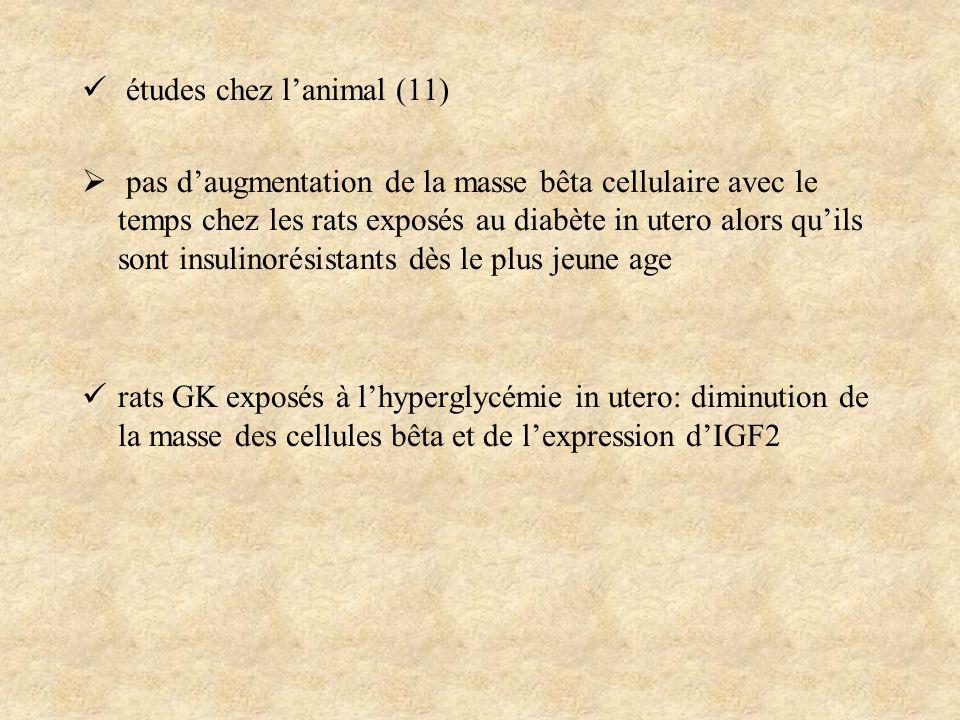 études chez lanimal (11) pas daugmentation de la masse bêta cellulaire avec le temps chez les rats exposés au diabète in utero alors quils sont insuli