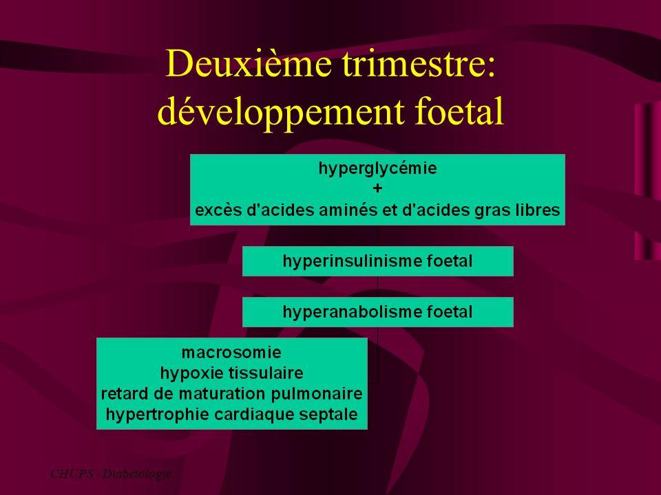 Prise en charge glycémique Grossesse programmée Dépistage et traitement des complications arrêt des sulfamides (risque tératogène) et des biguanides insulinothérapie avec pour objectif la normoglycémie : oHbA1c normale, oDiabète type 2: glycémie à jeun 0,9 et post prandiale 1,20 g/l oDiabète type 1: moyenne glycémique entre 0,6 et 1,60 g/l.