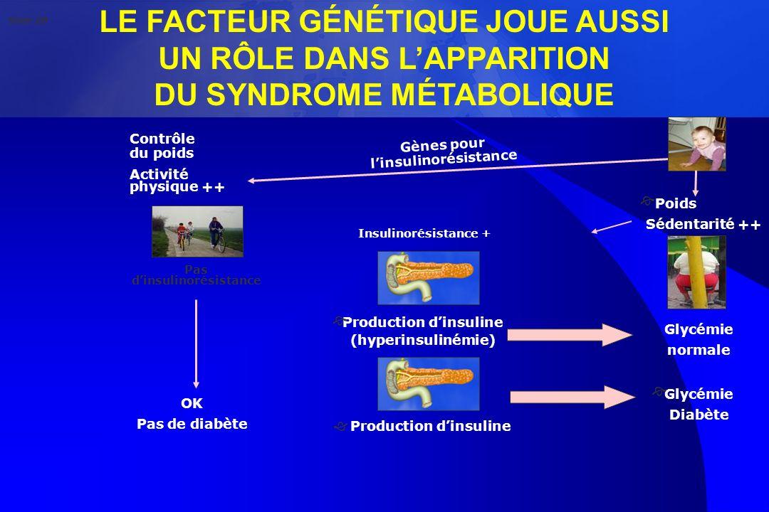 LE FACTEUR GÉNÉTIQUE JOUE AUSSI UN RÔLE DANS LAPPARITION DU SYNDROME MÉTABOLIQUE Contrôle du poids Activité physique ++ Gènes pour linsulinorésistance