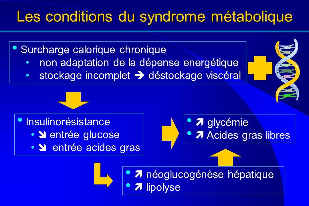 Les conditions du syndrome métabolique Surcharge calorique chronique non adaptation de la dépense energétique stockage incomplet déstockage viscéral n