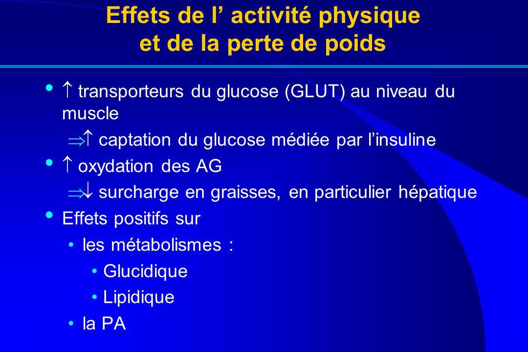 Effets de l activité physique et de la perte de poids transporteurs du glucose (GLUT) au niveau du muscle captation du glucose médiée par linsuline ox