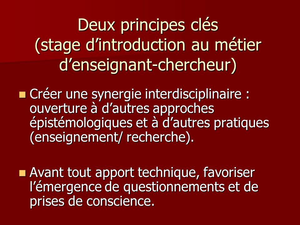 Deux principes clés (stage dintroduction au métier denseignant-chercheur) Créer une synergie interdisciplinaire : ouverture à dautres approches épistémologiques et à dautres pratiques (enseignement/ recherche).
