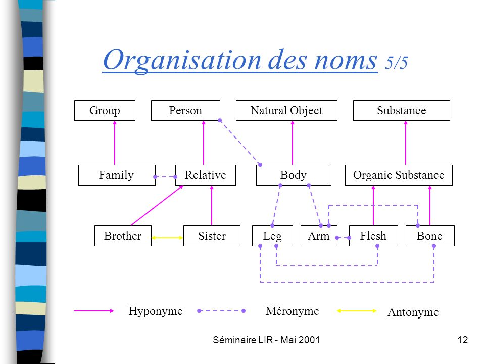 Séminaire LIR - Mai 200112 Organisation des noms 5/5 PersonGroupNatural ObjectSubstance FamilyRelativeBodyOrganic Substance ArmSisterBrotherLegFleshBo