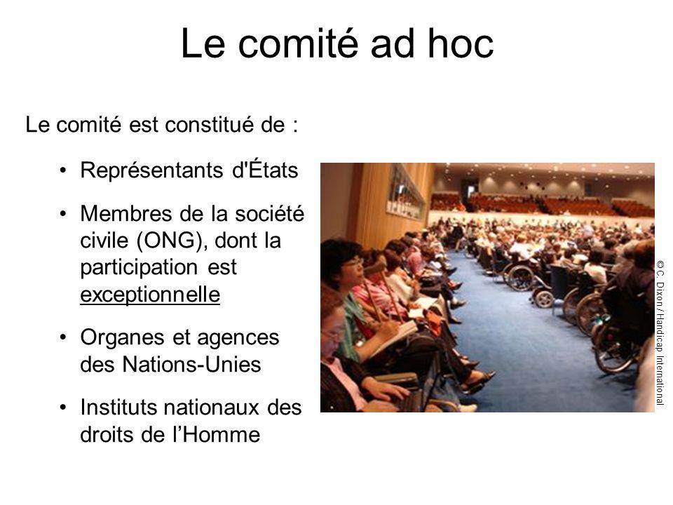 Le comité ad hoc Le comité est constitué de : Représentants d'États Membres de la société civile (ONG), dont la participation est exceptionnelle Organ