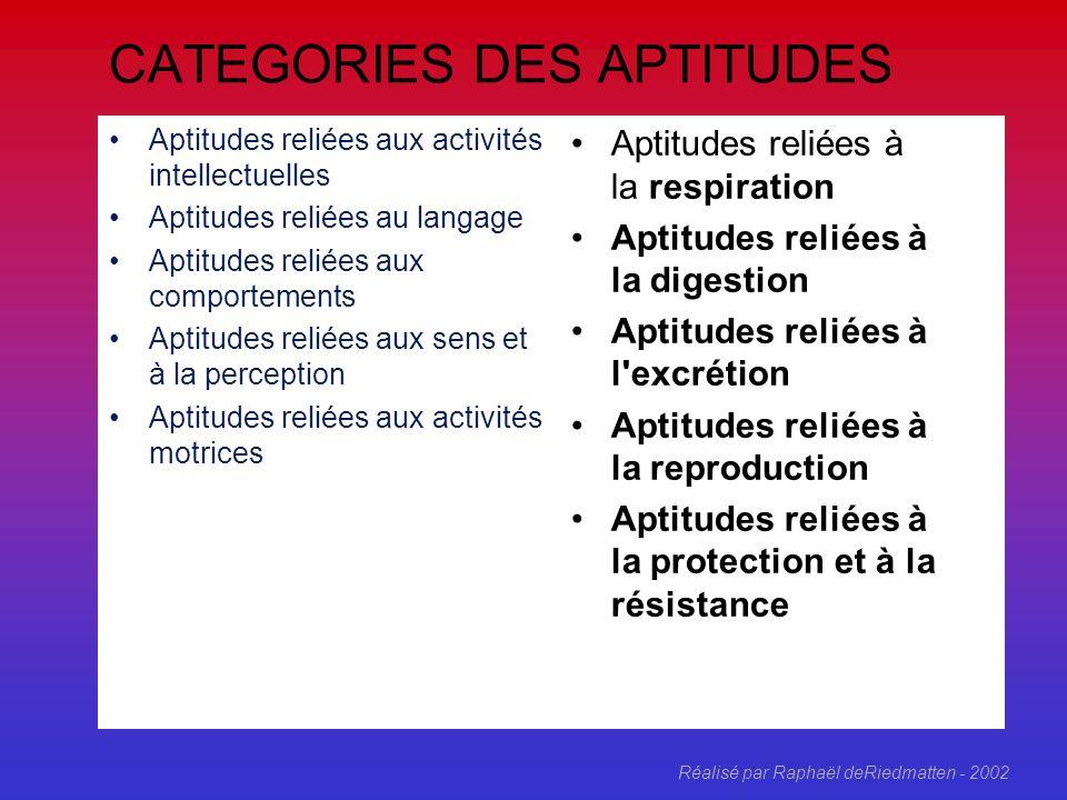 Réalisé par Raphaël deRiedmatten - 2002 Facteurs personnels Système organique Aptitudes Capacité Incapacité Idée de « degrés » de capacité Integrité d