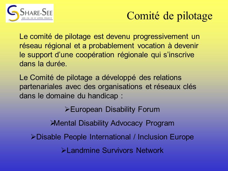 Le comité de pilotage est devenu progressivement un réseau régional et a probablement vocation à devenir le support dune coopération régionale qui sinscrive dans la durée.