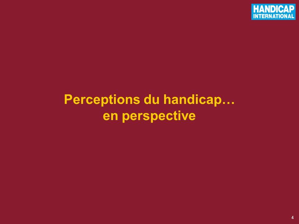 4 Perceptions du handicap… en perspective