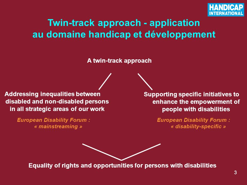 3 Addressing inequalities between disabled and non-disabled persons in all strategic areas of our work Supporting specific initiatives to enhance the