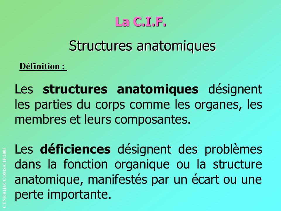 La C.I.F. Structures anatomiques Définition : Les structures anatomiques désignent les parties du corps comme les organes, les membres et leurs compos