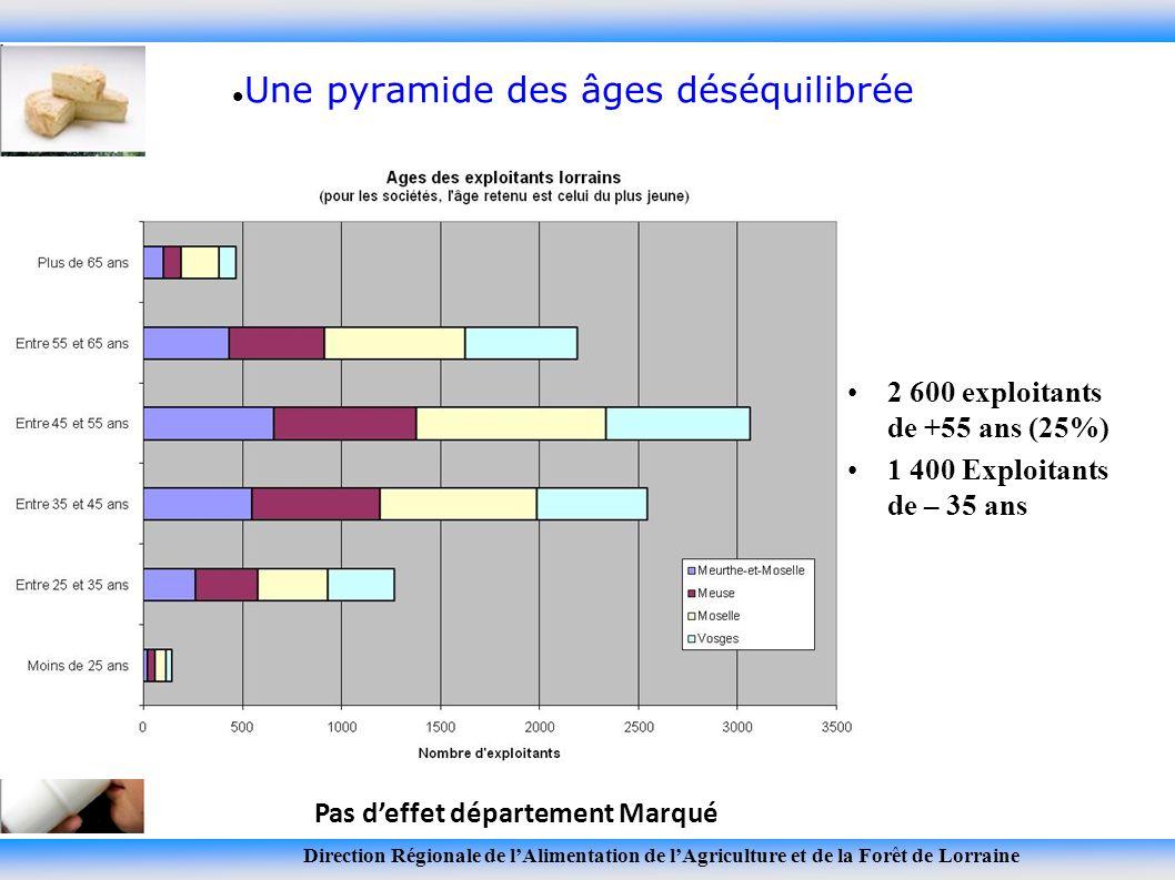 Direction Régionale de lAlimentation de lAgriculture et de la Forêt de Lorraine Une pyramide des âges déséquilibrée 2 600 exploitants de +55 ans (25%) 1 400 Exploitants de – 35 ans Pas deffet département Marqué