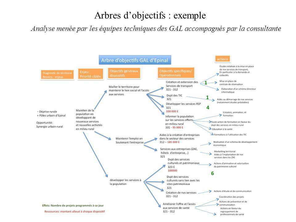 Arbres dobjectifs : exemple Analyse menée par les équipes techniques des GAL accompagnés par la consultante