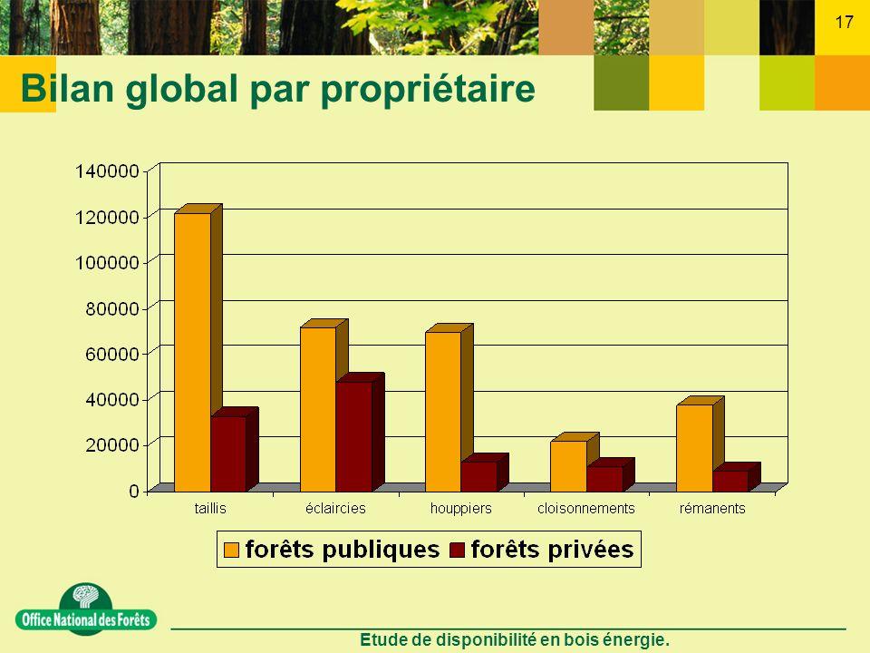 Etude de disponibilité en bois énergie. 17 Bilan global par propriétaire