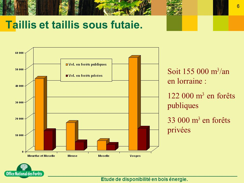 Etude de disponibilité en bois énergie. 6 Taillis et taillis sous futaie. Soit 155 000 m 3 /an en lorraine : 122 000 m 3 en forêts publiques 33 000 m
