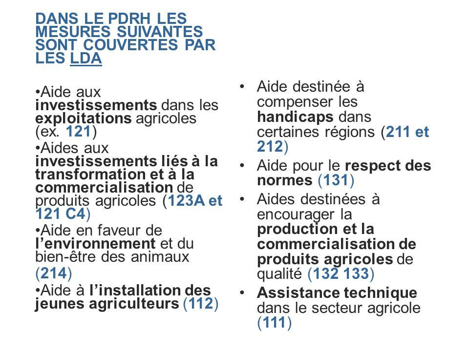 DANS LE PDRH LES MESURES SUIVANTES SONT COUVERTES PAR LES LDA Aide aux investissements dans les exploitations agricoles (ex. 121) Aides aux investisse