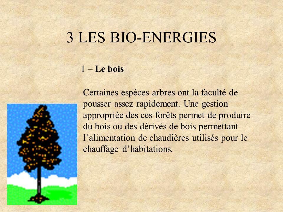 3 LES BIO-ENERGIES 1 – Le bois Certaines espèces arbres ont la faculté de pousser assez rapidement. Une gestion appropriée des ces forêts permet de pr