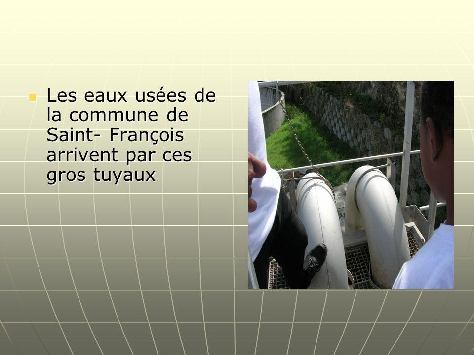 Les eaux usées de la commune de Saint- François arrivent par ces gros tuyaux Les eaux usées de la commune de Saint- François arrivent par ces gros tuy