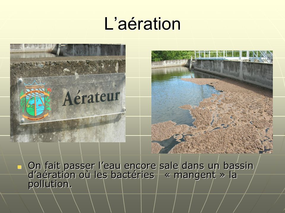 Laération On fait passer leau encore sale dans un bassin daération où les bactéries « mangent » la pollution. On fait passer leau encore sale dans un