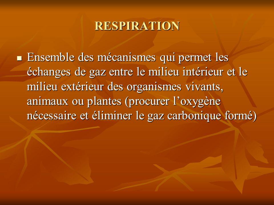 RESPIRATION Ensemble des mécanismes qui permet les échanges de gaz entre le milieu intérieur et le milieu extérieur des organismes vivants, animaux ou