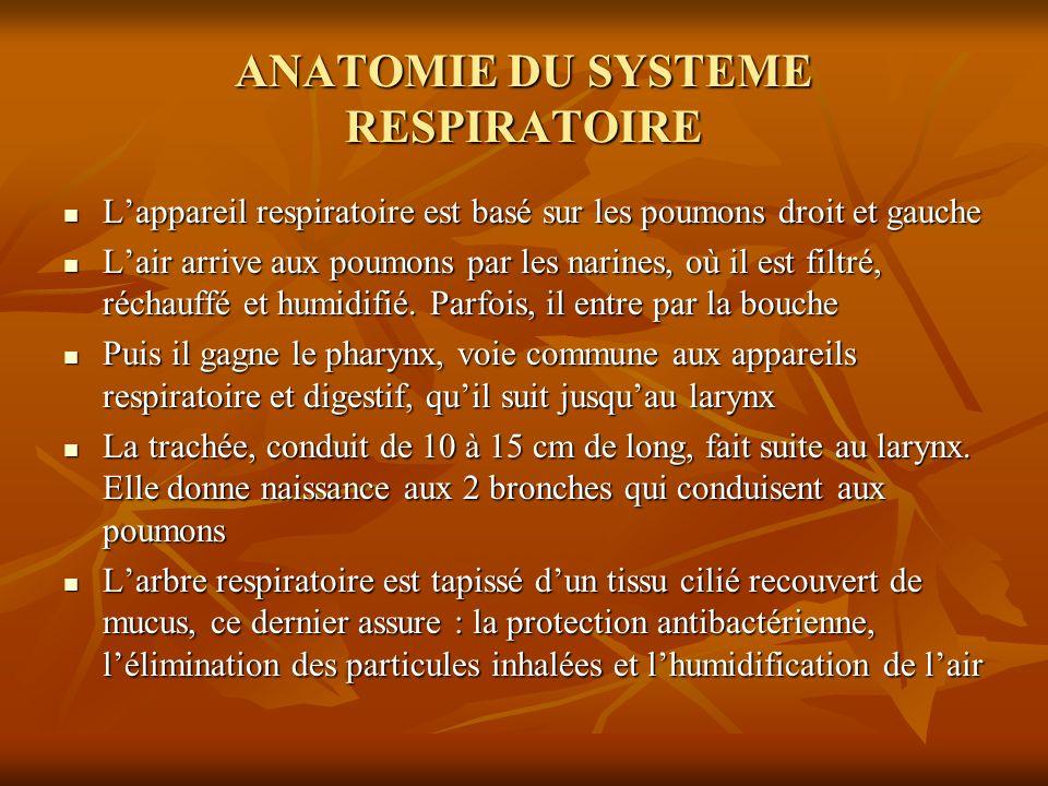 ANATOMIE DU SYSTEME RESPIRATOIRE Lappareil respiratoire est basé sur les poumons droit et gauche Lappareil respiratoire est basé sur les poumons droit