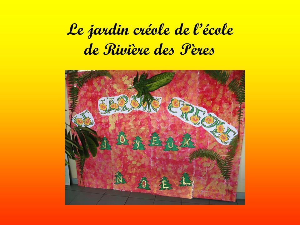 A loccasion de Noël, tous les élèves ont amené des plantes pour le jardin créole de lécole.