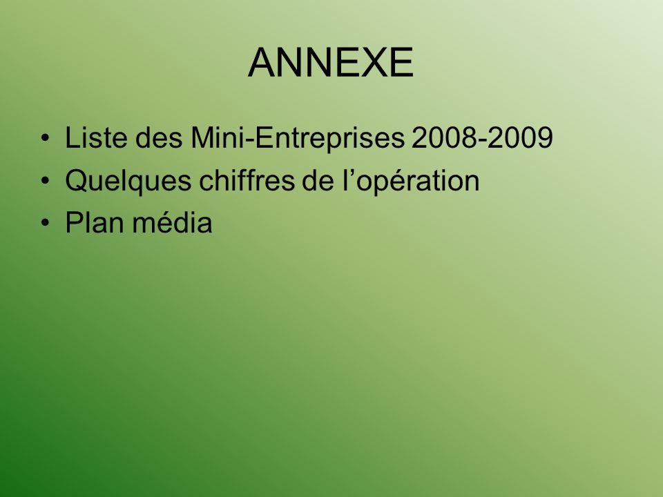 ANNEXE Liste des Mini-Entreprises 2008-2009 Quelques chiffres de lopération Plan média