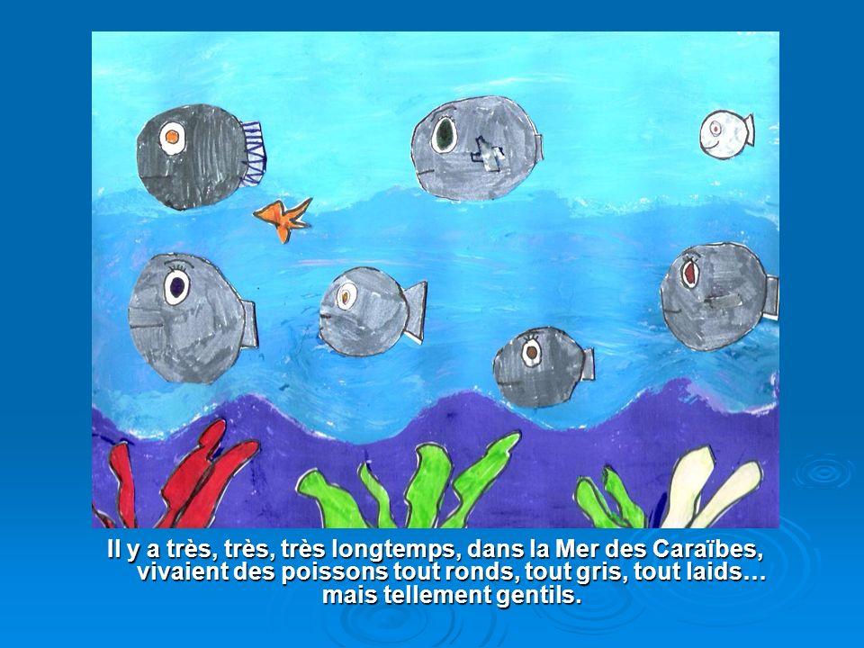 Les élèves de la classe de CE 2 b de lécole ont créé, à partir dun texte créole de Sylviane Telchid, un album. Moi, leur professeur, je me suis amusée