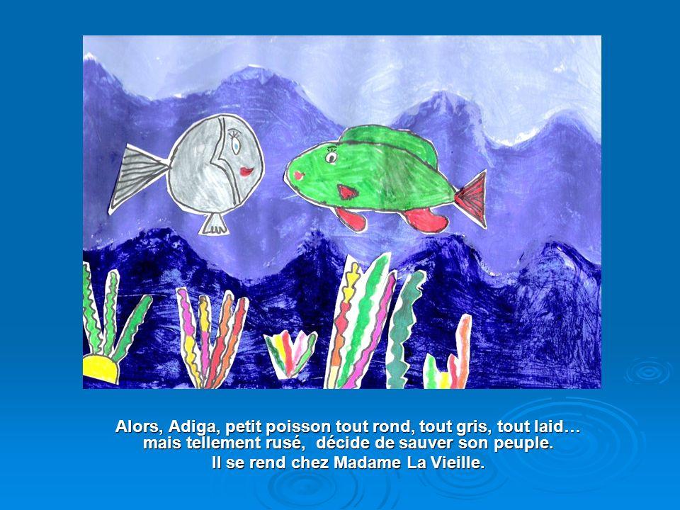 Mais Adiga, petit poisson tout rond, tout gris, tout laid… mais tellement seul : Son père, sa mère, ses frères et ses sœurs navaient pas survécu à leu