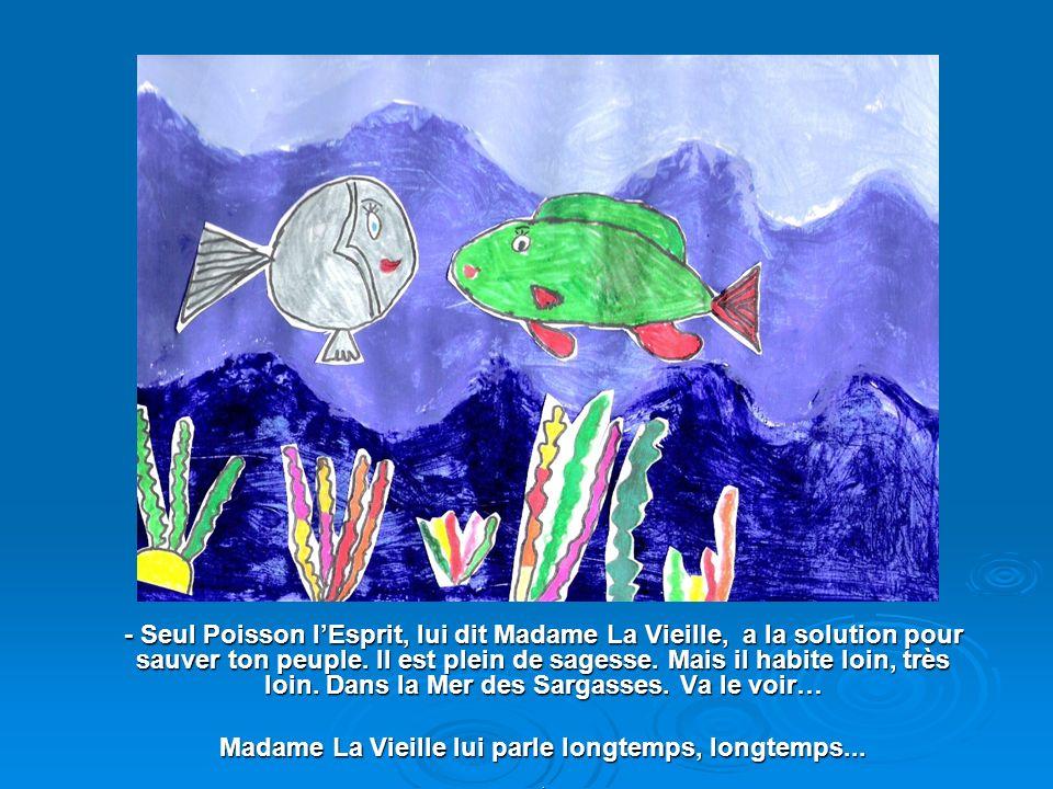 Alors, Adiga, petit poisson tout rond, tout gris, tout laid… mais tellement rusé, décide de sauver son peuple. Il se rend chez Madame La Vieille.