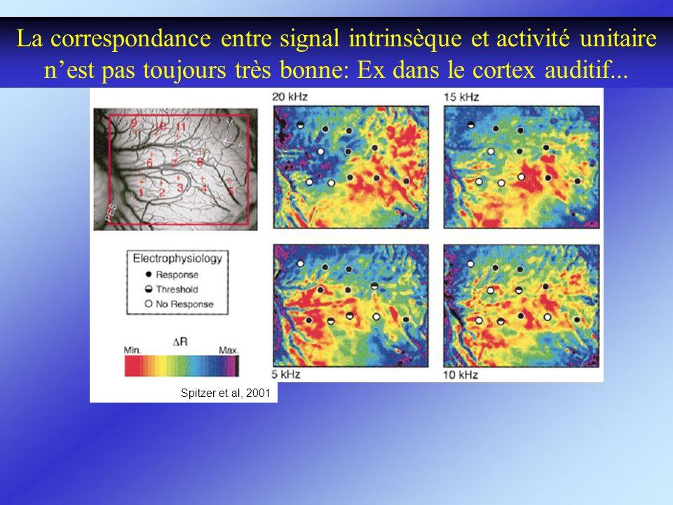 La correspondance entre signal intrinsèque et activité unitaire nest pas toujours très bonne: Ex dans le cortex auditif... Spitzer et al, 2001